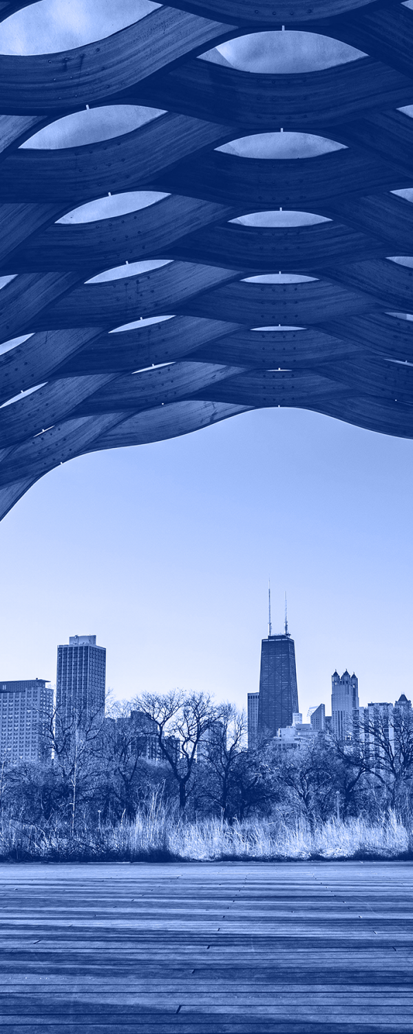 chicago-view-blue-cropped